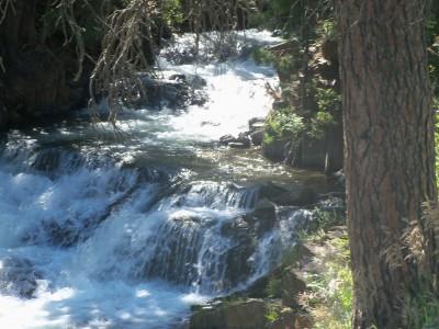 Rapid Creek area