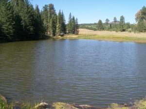 Civilian Conservation Corps Dam