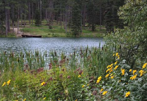 Dalton Lake *