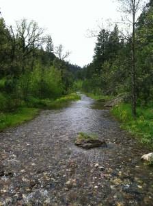 Victoria Creek